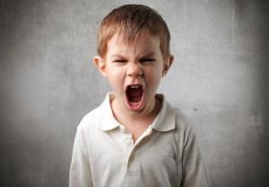 Как сказать «Нельзя» и не вызвать гнев маленького вредителя!