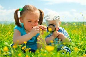 Экологическое воспитание детей: цели, задачи и план работы