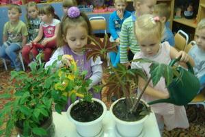 Экологическое воспитание детей дошкольного возраста: основы и проблемы