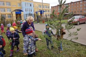 Познавательные занятия с детьми на прогулке